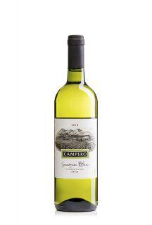 campero-sauvignon-blanc-20032-6007-23002